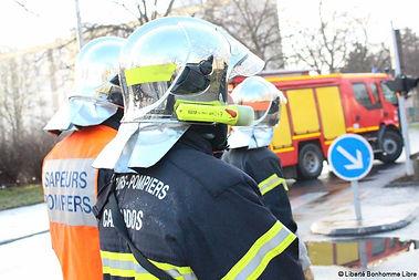 pompiers calvados sdis  14 frelon guepe