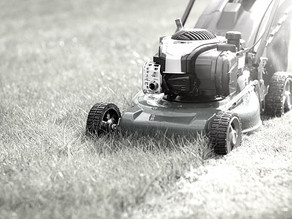 Mowing, Minor Leagues, and Molder Selection