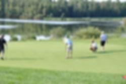 Golf2012.jpg
