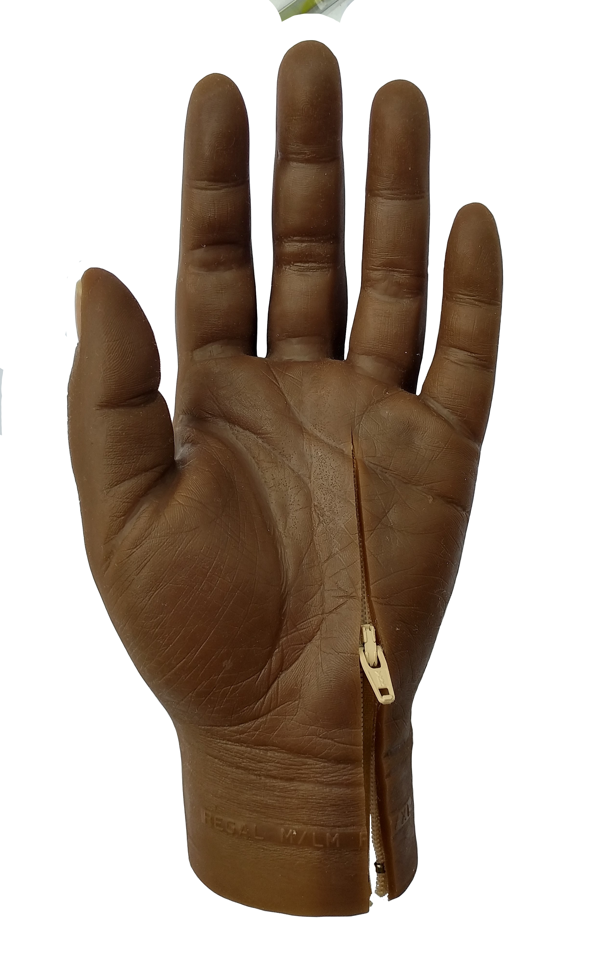Silicone Partial Hand with zip