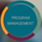 program management graphic 2.png