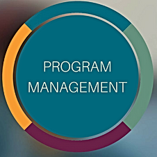 program management graphic 2.png