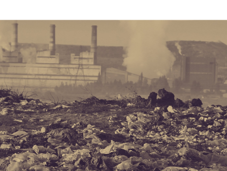Cleaning Up SaaS Content Pollution