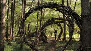 自然邊界的螺旋  The Spiral in the Natural Boundary