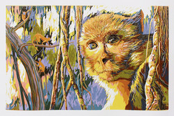 靈視Primates gaze 2015