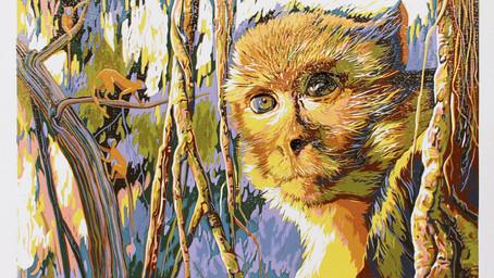 靈視  Primates gaze