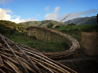 嵩山竹曲  Songshan Bamboo meander