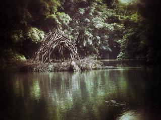 藝術生境_水孕   Ecological niche of art_Gravida