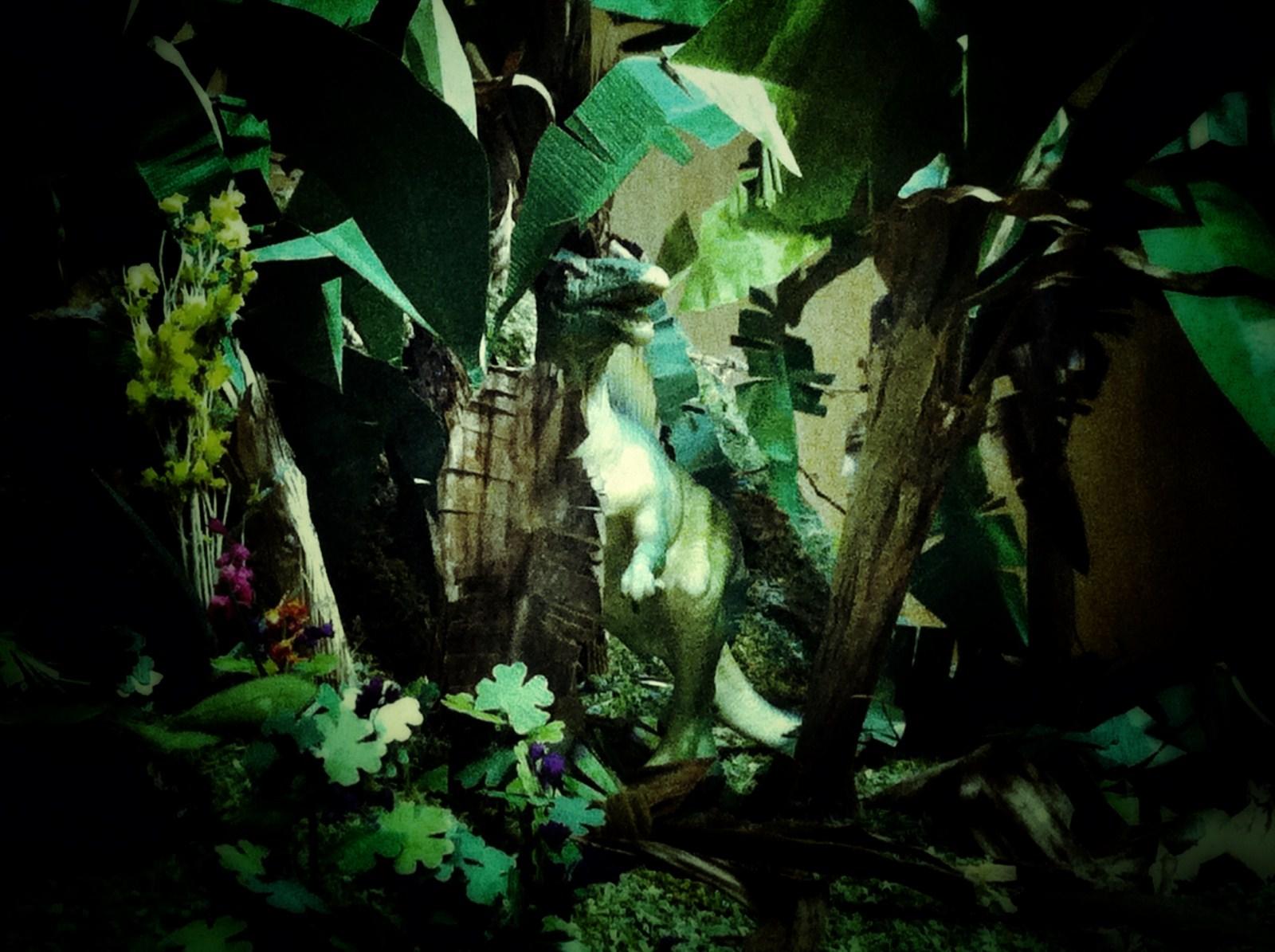 Wonderland (3)