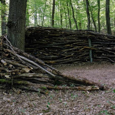 Forest guardian / 森林守護者