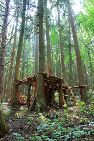 水氣場-3 森林平台 Water Aura-3 Forest Platform