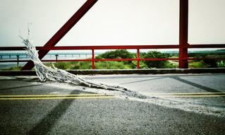 潮間帶在西螺   Intertidal zone in Xiluo