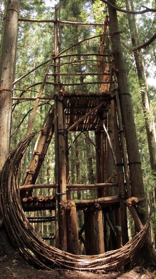水氣場-3 森林瞭望台  Water Aura-3  Forest Lookout