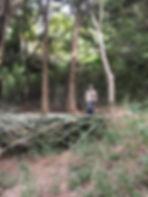 相片 2018-11-6 08 40 32 [1600x1200].jpg