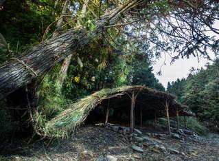 Nga-San-Mu Studio