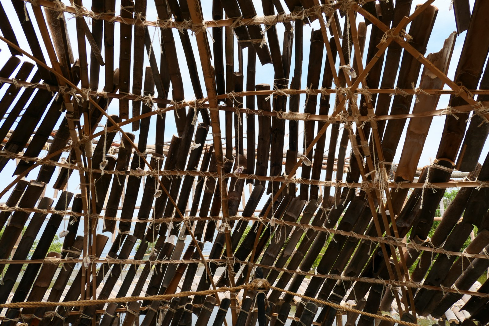 Chenglong shelter 16 [1600x1200]