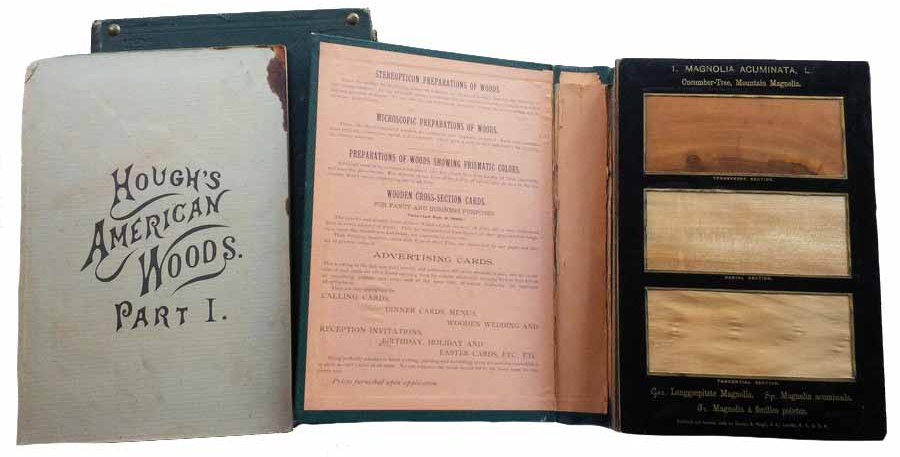 The American Woods illustrated with real samples