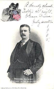 Ephemeral Assays-Paper Rooseveltiana