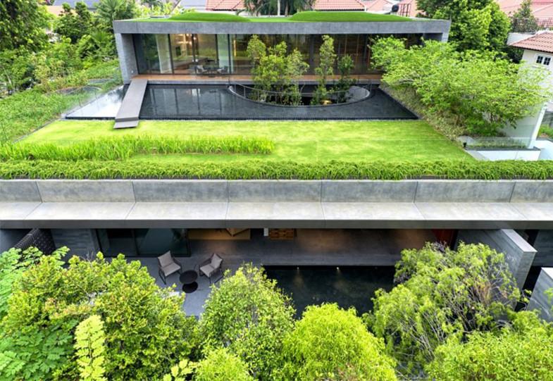 Telhado verde intensivo