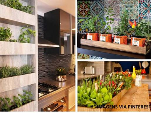 Dicas da M2: como ter uma horta em casa?
