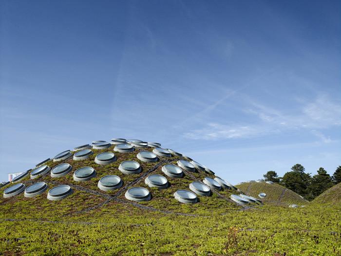 Academia de Ciências da Califórnia, Renzo Piano