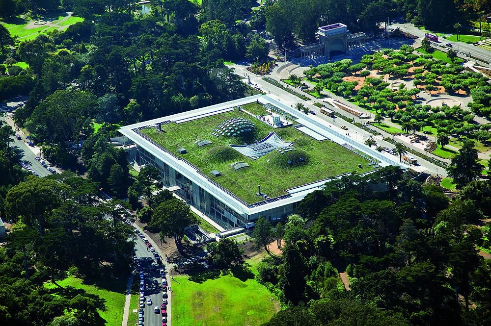 Academia de Ciências da Califórnia. Projeto de Renzo Piano.
