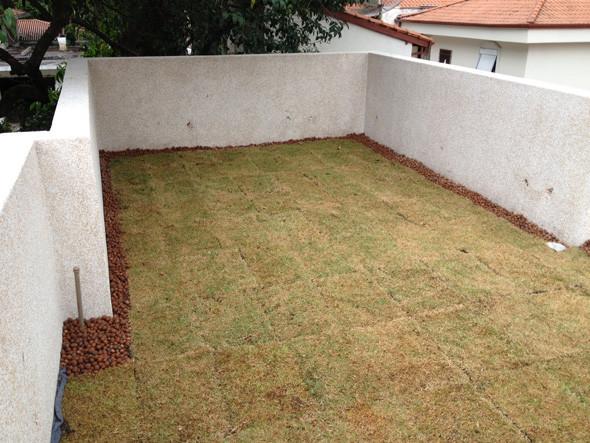 Execução de telhado verde: vegetação