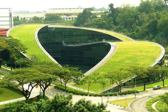 Telhado verde - Escola de Arte,Design e Comunicação - Universidade Tecnológica de Nanyang - Cingapura