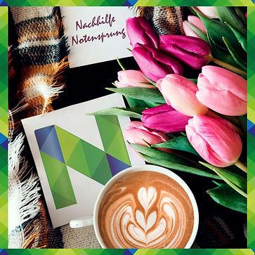Tulpen, Notensprung, Nachhilfe Baesweile