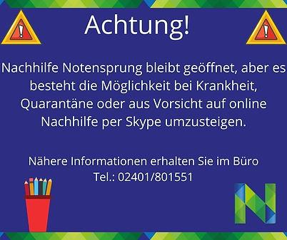Online Skype.jpg