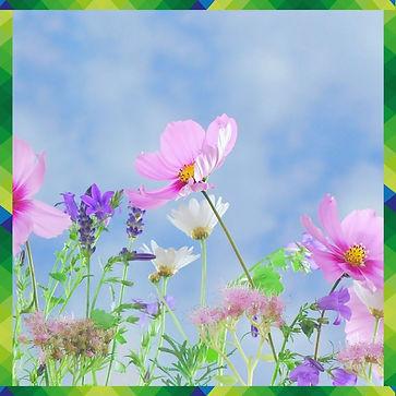 Frühlingsblumen, Nachhilfe Notensprung,