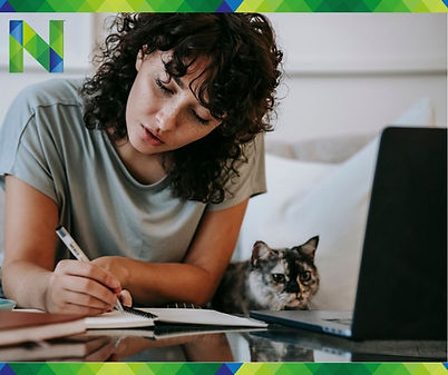 Online lernt auch die Mietze mit und wir