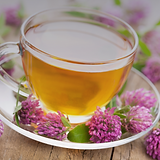 herbal tea photo red clover