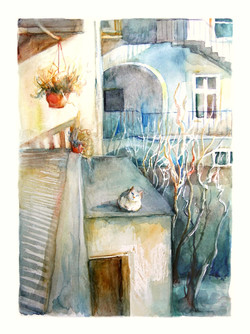 Cat in the old yard. Watercolour