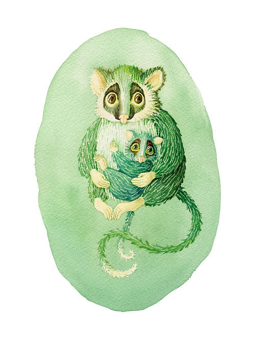 Ringtail possums in green - Giclée Art Prints