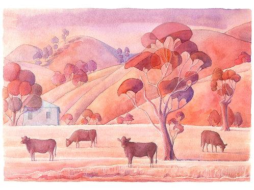 Australian Farm in Red - Giclée Art Prints