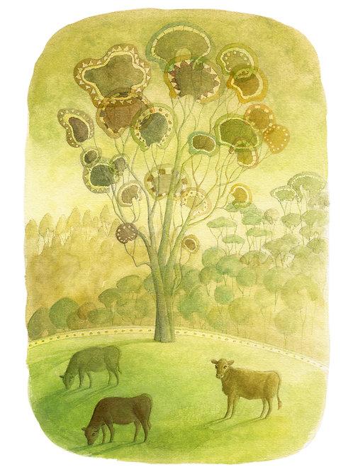 Gum Tree on the Australian Farm - Giclée Art Prints