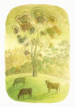 Gum tree on the farm. Watercolour A4