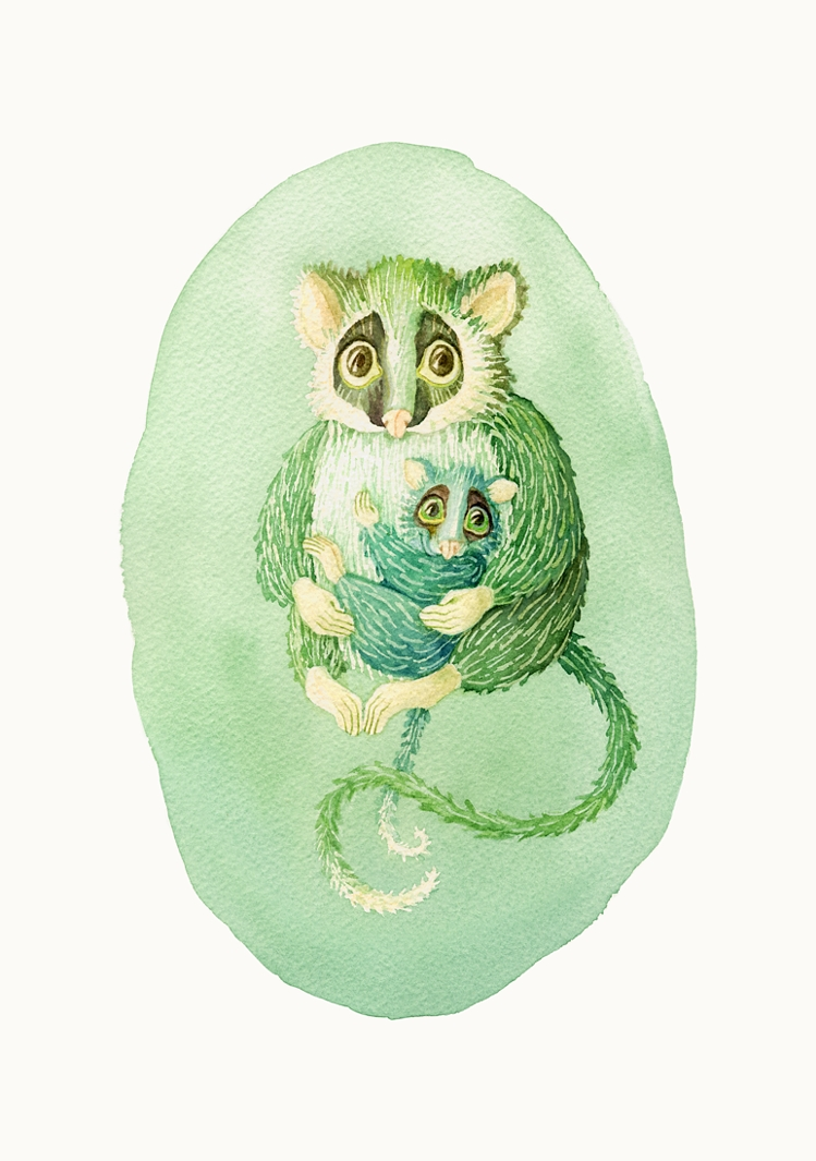 Possums in green. Watercolour, A4
