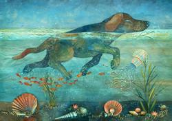 Fafik in the reefs