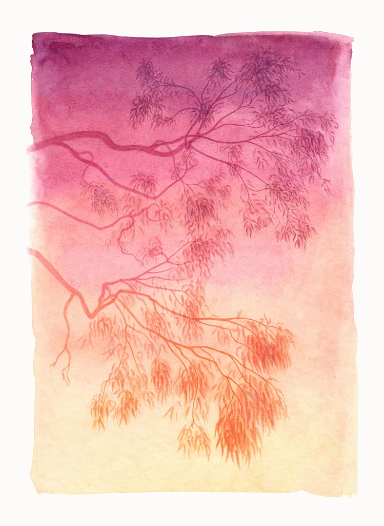 Gum tree in orange. Watercolour, A4