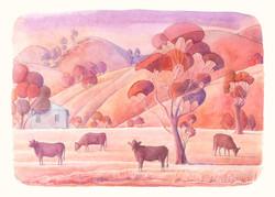 Australian farm. Watercolour, A4