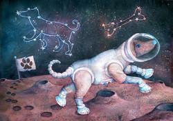 Fafik in space