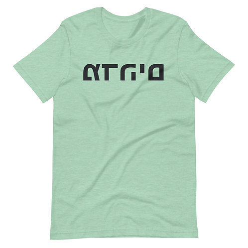 Short-Sleeve Unisex T-Shirt (AMAZING in Hebrew)