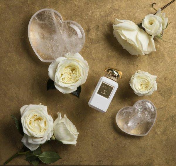 La délicate luminosité de l'absolu de graines d'ambrette offre d'abord une note opulente et soyeuse à l'aérien voile floral qui compose l'eau de parfum AERIN Rose de Grasse.