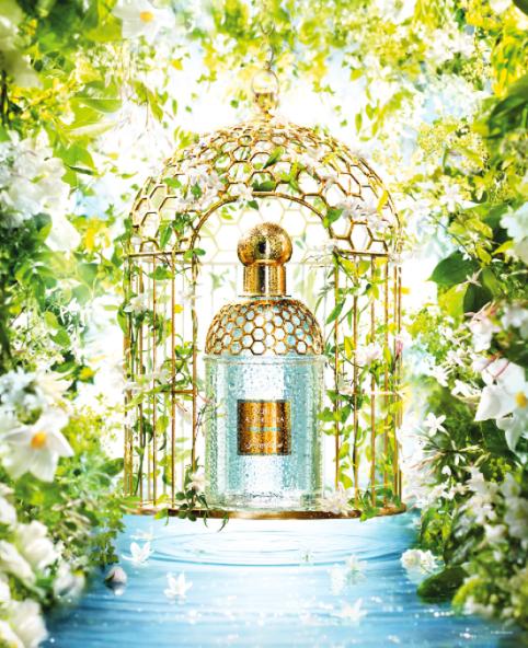 un nouVeau Visuel aQua alleGoria Depuis 1999, l'esprit aqua allegoria se réinvente non seulement à travers ses parfums, mais aussi son imaginaire visuel, aussi riche et varié que l'infinie palette des jardins du monde...