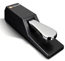 Sustain Pedal.png