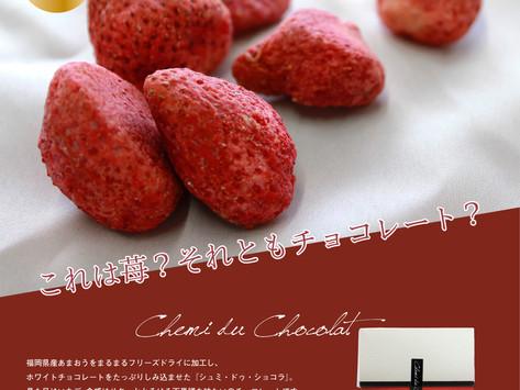 シュミ・ドゥ・ショコラあまおう苺 販売開始しました。