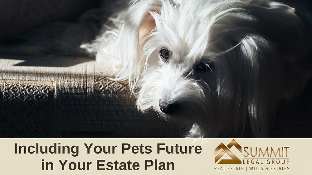 Remember to include the care of your pets in your Estate Plan.