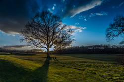 Owston Sunset